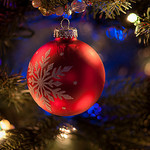 Red ornament hanging from tree