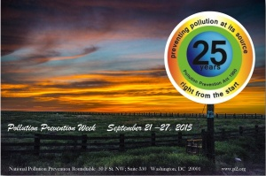 P2-Week-Poster-2015-cropped-for-WP