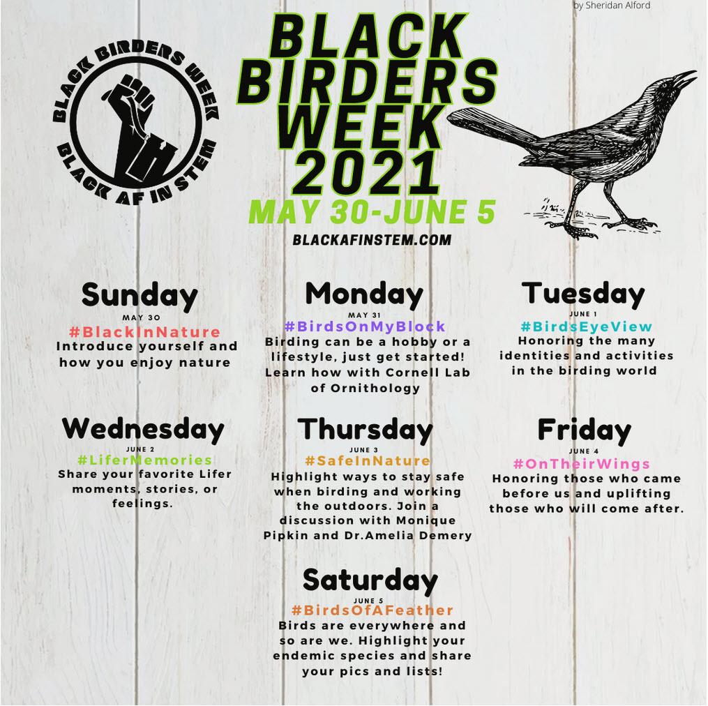 Black Birders Week 2021 schedule. Visit https://blackafinstem.squarespace.com/bbw2021schedule for text.